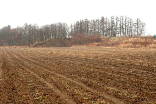 雪を待つ畑