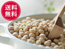国産北海道産大豆無農薬大豆とよまさり 業務用
